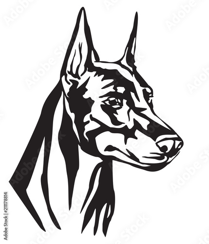 Fotografía Decorative portrait of Dog Dobermann vector illustration