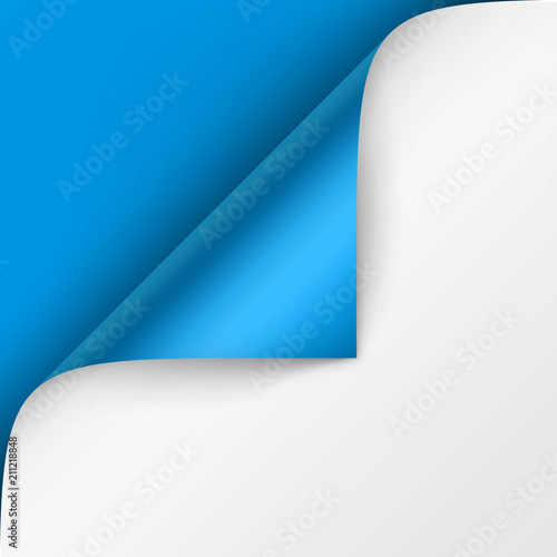 Fototapeta Vector Curled corner of White paper with shadow Mock up Close up Isolated on Bright Blue Background obraz