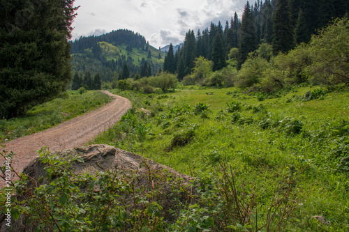 Foto op Canvas Zwart Summer stone road to the mountain. Kazakhstan.