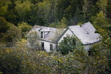 Derelict House In New Brunswick, Canada. This Abandoned Property Is Being Reclaimed By The Forest. High Level View.