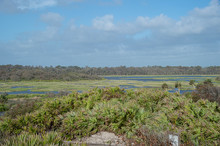 The Guana River Wildlife Management Area Is Part Of The Guana Tolomato Matanzas National Estuarine Research Reserve.