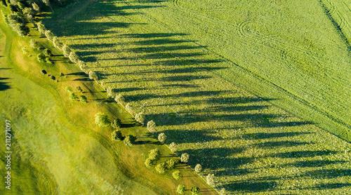 Cuadros en Lienzo  campagna - vista aerea