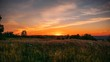 Time lapse of beautiful summer sunset with waving wild grass in sunlight, rural meadow or field in countryside, toned