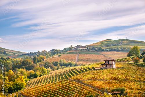 Langhe e Roero vineyards autumn landscape, Barolo, Dolcetto, Barcaresco wine Canvas Print