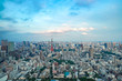 TOKYO, JAPAN - June 21, 2018: Tokyo Tower is the world's tallest, self-supported steel tower in Tokyo, Japan