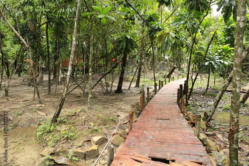 Tuinposter Weg in bos Paysage tropical de l'île de Koh Rong au Cambodge