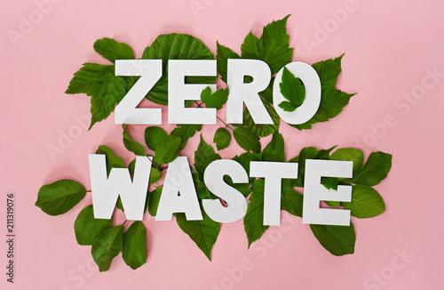 zero waste paper text witj green leaves on pink background Fototapeta