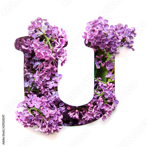 Poster Fleur The letter U of the English alphabet from lilac