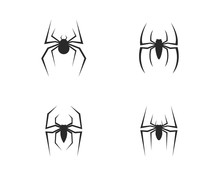 Spider Logo Vector