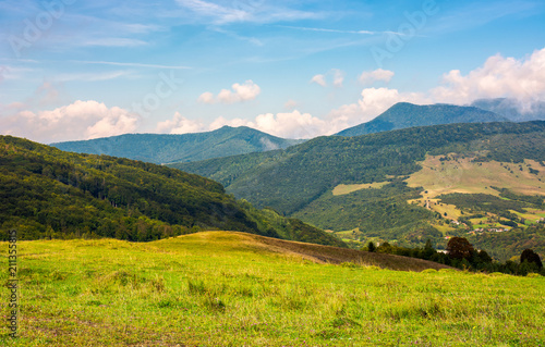 grassy hill in late summer. beautiful mountainous landscape on a cloudy day