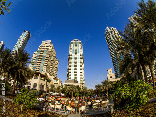 Canvas Prints Palm tree Dubai Marina, United Arab Emirates, Dubai