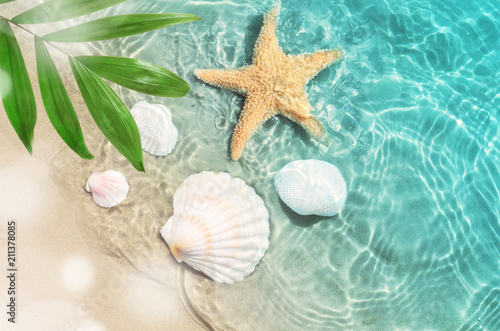 Fotografia starfish and seashell on the summer beach in sea water.