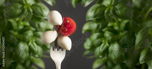 Mini mozzarella cheese balls, cherry tomatoes and green basil.