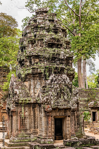 Spoed Foto op Canvas Bedehuis Ta Prohm the temple ruins overgrown with trees at Angkor, Siem Reap , Cambodia