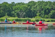 Summer Vacation, Summer Holiday - Kayaking Through A Wetland Area