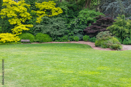 Foto op Plexiglas Tuin Beautiful Green Garden Setting With Wood Bench