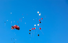 Party Balloons Floating Away I...