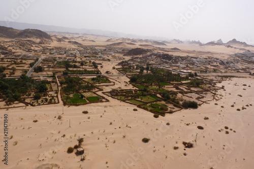 Deurstickers Zalm desert algerie
