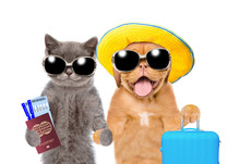 Kitten And Puppy In Summer Hat And With Sunglasses Holds Suitcase, Airline Tickets And Passport Ready For A Vacation. Isolated On White Background