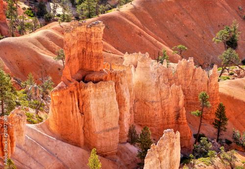 Bryce canyon. Fantastic colorful rock landscape. Morning fairy light. Utah, USA.