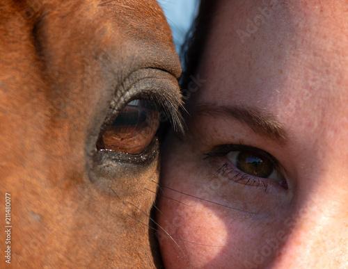 Canvas Prints Horses Détail Portrait cheval oeil et femme