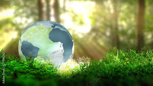 Fotografía  Globe terrestre sur de la végétation en foret