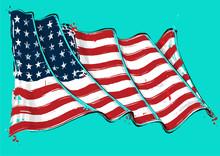 American 48 Star Artistic Brus...