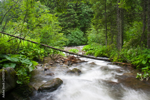 Fototapeten Forest river Fast mountain river on long exposure in summer