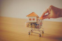 Risk Property Investment And House Mortgage Financial Concept, House And Money Coin In Shopping Cart