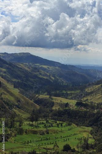 Staande foto Bleke violet Valle de Cocora, salento colombia