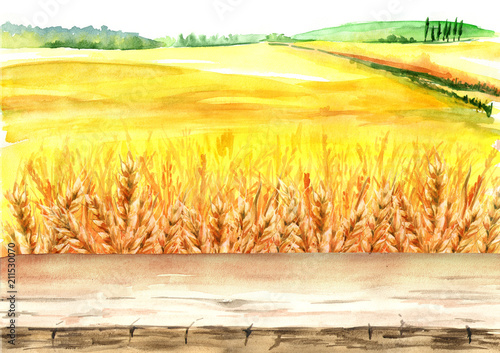 Fotobehang Zwavel geel Summer rural landscape. Wheat field with blank board. Watercolor hand drawn illustration, background for your design
