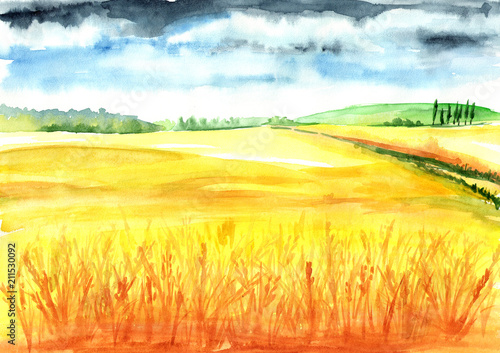 Poster Jaune Summer rural landscape. Wheat field. Watercolor hand drawn illustration, background