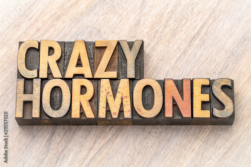Fotografie, Obraz  crazy hormones word abstract  in wood type