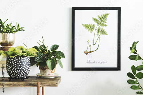 Fototapeta Stylish and modern scandinavian room with wooden console, mock up poster frame and beautiful plants. Design composition of home interior. obraz