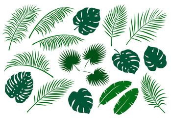 set zelenih listova palme