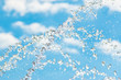 splashing water against the sky