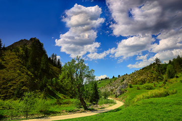 wiosna w Pieninach