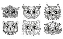Owls. Heads. Design Zentangle....