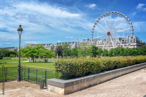 Fototapeta Tuileries garden, Ferris wheel in the background, Paris, France obraz