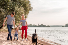 Family Walking Outdoors Holding Hands. The Dog Runs Alongside. Concept Family Vacation