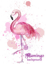 Vintage Flamingo Watercolor Card Vector. Hand Made Design Decors