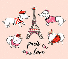 French Style Dogs And Eiffel Tower Isolated On Pink Background. Cute Cartoon Couples Of Parisian Dachshund And  Pomeranian Vector Illustration. French Style Dressed Dog With Red Beret.