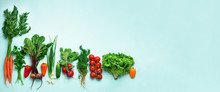 Organic Vegetables And Garden Tools On Blue Background With Copy Space. Banner. Top View Of Carrot, Beet, Pepper, Radish, Dill, Parsley, Tomato, Lettuce. Veggies Growing In Soil. Vegan, Eco Concept