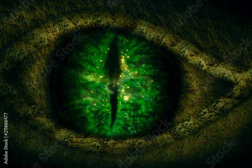 Dragon eye. Tablou Canvas