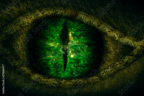 Fotografía  Dragon eye.