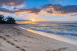 Sunset over Sunset Beach on the North Shore of Oahu, Hawaii with palm trees and surf rolling in on the sandy beach