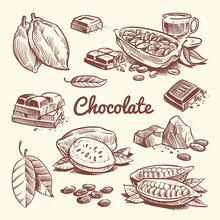 Hand Drawn Cacao, Leaves, Coco...