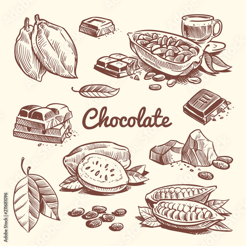 Valokuva Hand drawn cacao, leaves, cocoa seeds, sweet dessert and chocolate bar