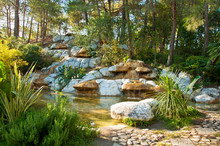 Tropical Landscape Design. View Of Small Pond And Waterfall