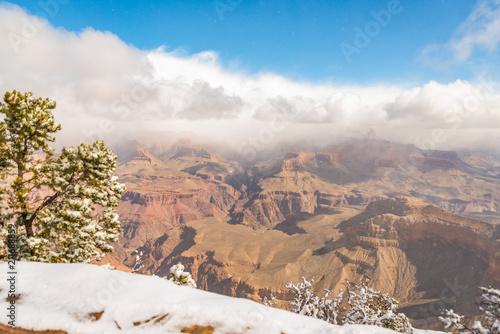 Fotobehang Zalm Grand Canyon